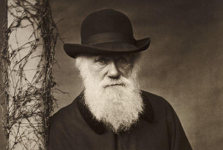 Charles Darwin, dari Hobi Mengumpulkan Serangga Menjadi Ilmuwan