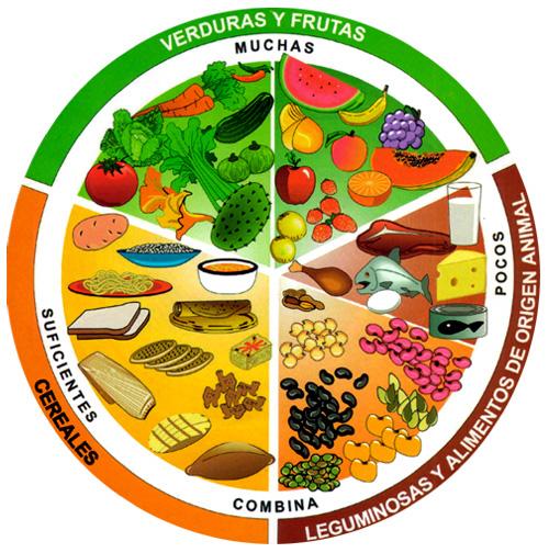 Para que sirve la dieta polimerica a base de caseinato de calcio