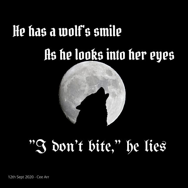 "12th Sep // He has a wolf's smile / As he looks into her eyes / ""I don't bite,"" he lies"