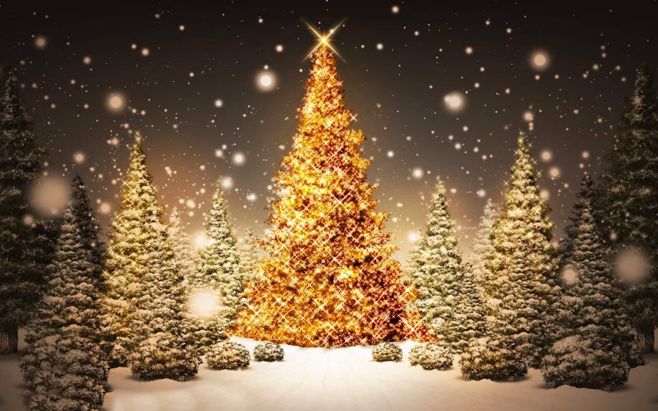 Auguri Di Buon Natale E Felice Anno Nuovo Canzone.Comitato Manifestazioni Roncoferraro Buon Natale E Felice Anno Nuovo