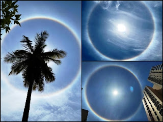 sun halo banglore 2021