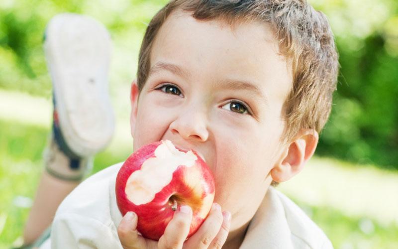 فوائد التفاح الصحيه للاطفال