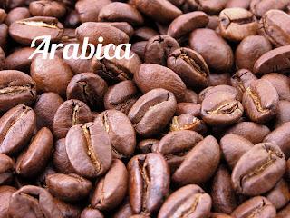 karakteristik arabika