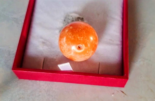 Thai Fisherman Finds Rare Orange Pearl Worth $330k