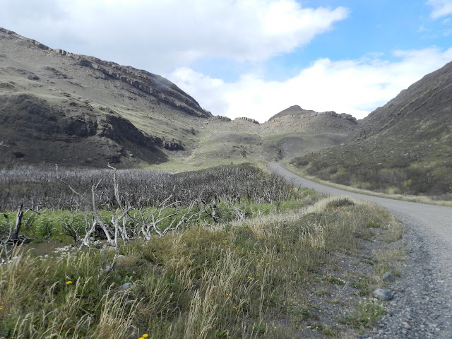 Incêndio Torres del Paine