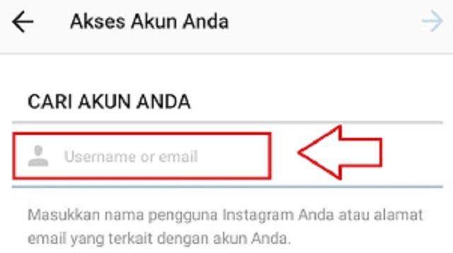 Cara Mengganti Nomor HP di Instagram tanpa Login