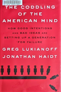 The Coddling of the American Mind: How Good Intentions and Bad Ideas Are Setting Up a Generation for Failure by Greg Lukianoff