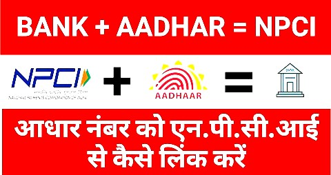 HOW CHECK AADHAR LINKING STATUS IS FETCHED FROM NPCI SERVER