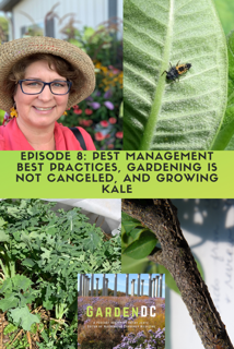 GardenDC Podcast Episode 8: IPM Best Practices, Gardening is Not Canceled, and Kale