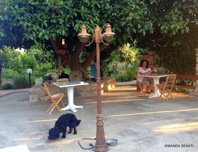 Taverna Filoxenia, Tilos