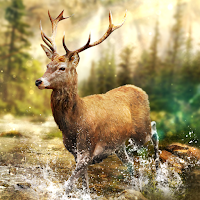 Hunting Clash: Hunter – Shooting Simulator Mod Apk