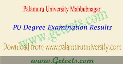 Palamuru university degree 3rd sem results 2019 Manabadi