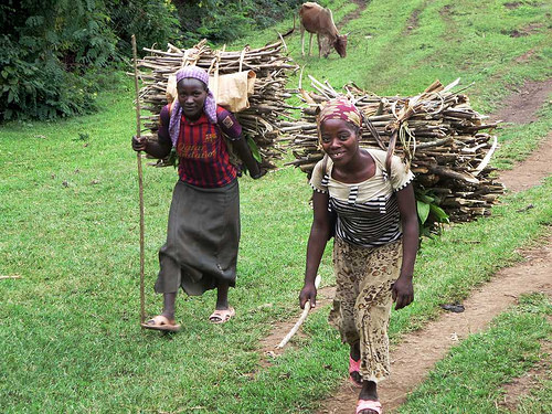 Collecting firewood in Jinka, Southern Ethiopia
