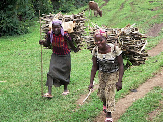 Collecting firewood in Jinka, Southern Ethiopia