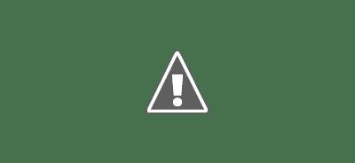 Chaque année, de plus en plus de blogueurs disent qu'ils mènent des recherches originales et l'ajoutent à leur mix de contenu au moins une fois par an. C'est une grande tendance.