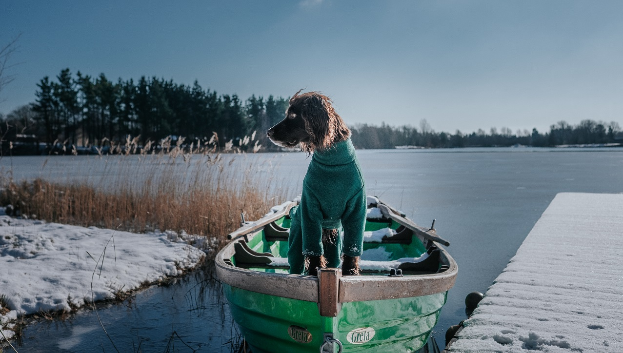 7 UK Adventure Dogs to Follow on Instagram