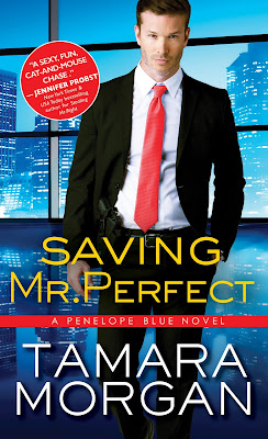 Excerpt, Giveaway, Saving Mr. Perfect, Tamara Morgan, Bea's Book Nook