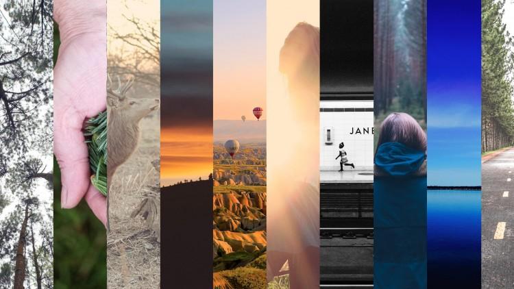 50% off Create a portfolio website for your artwork