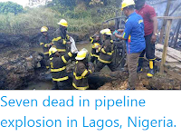 https://sciencythoughts.blogspot.com/2019/12/seven-dead-in-pipeline-explosion-in.html