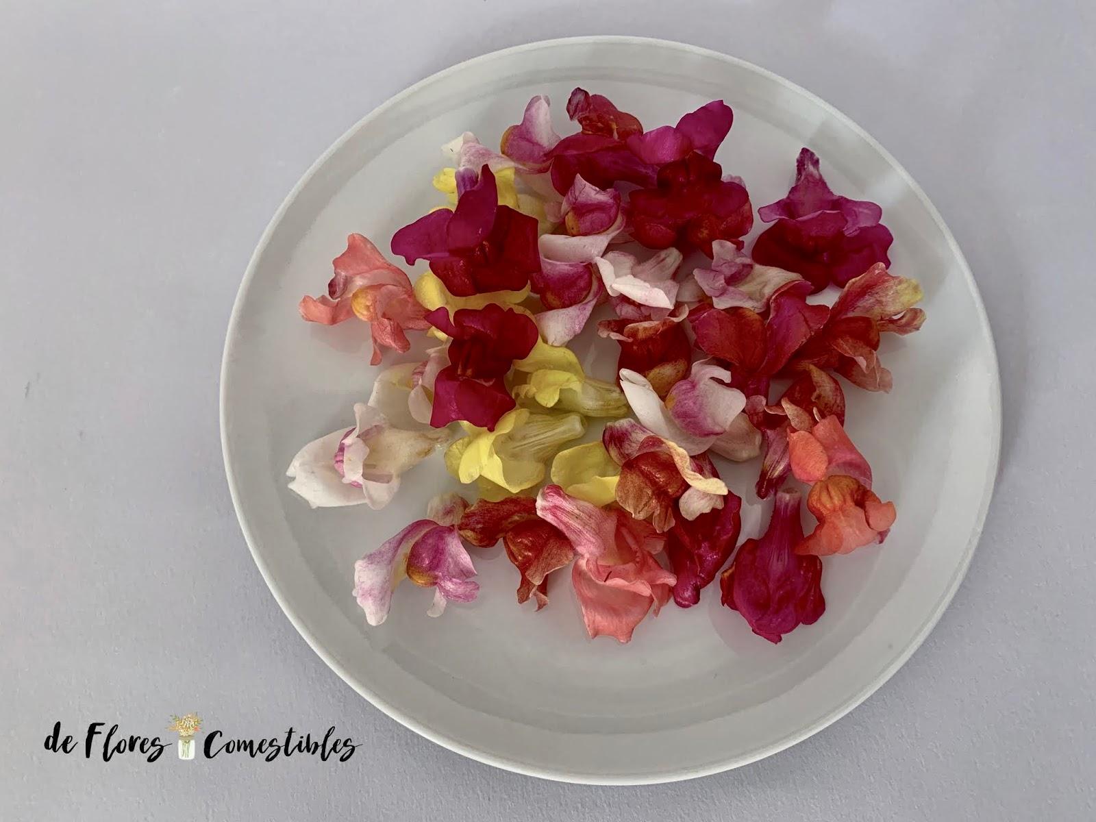 Flores de colores comestibles.