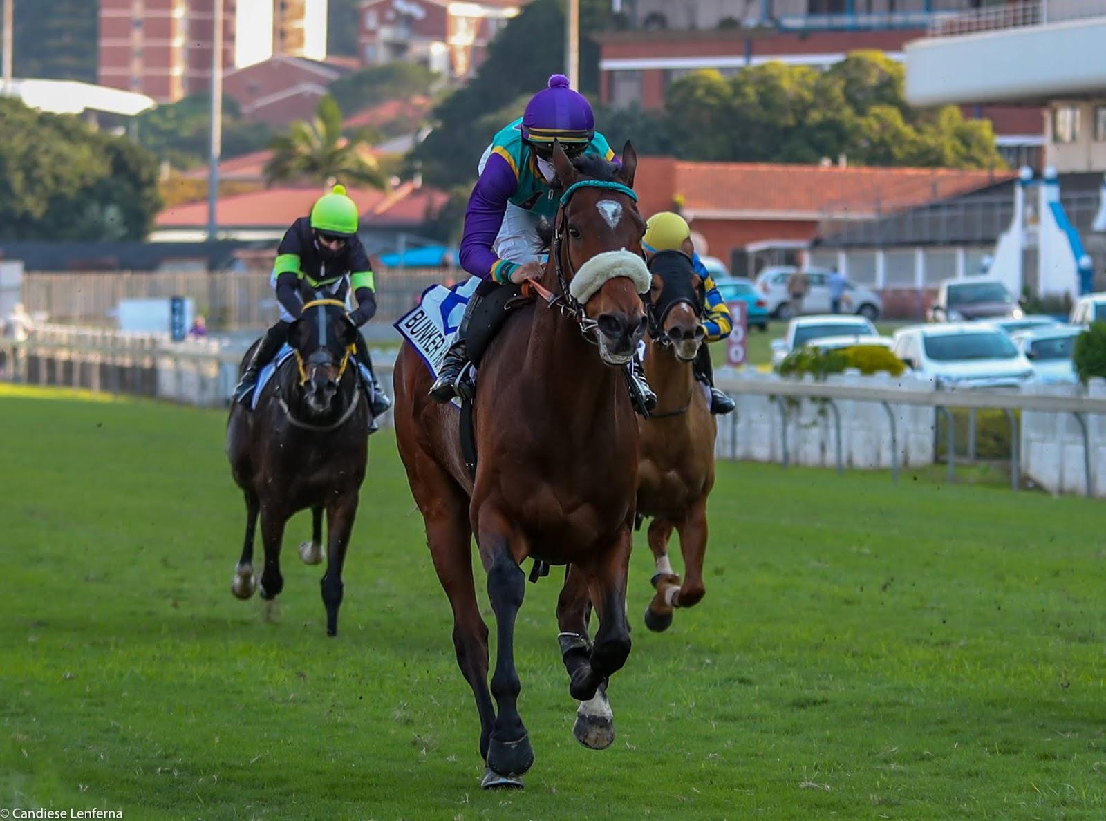 Vodacom Durban July 2020 Horse Profile - Bunker Hunt