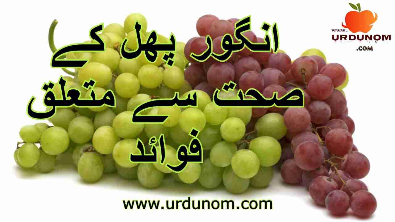 انگور پھل کے صحت سے متعلق فوائد |  Health Benefits of Grapes in urdu