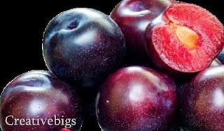 tentang buah plum