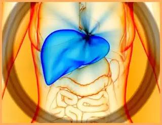 remedii naturale pentru ficat gras