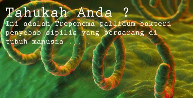 Antibiotik Untuk Penyebab Penyakit Sipilis
