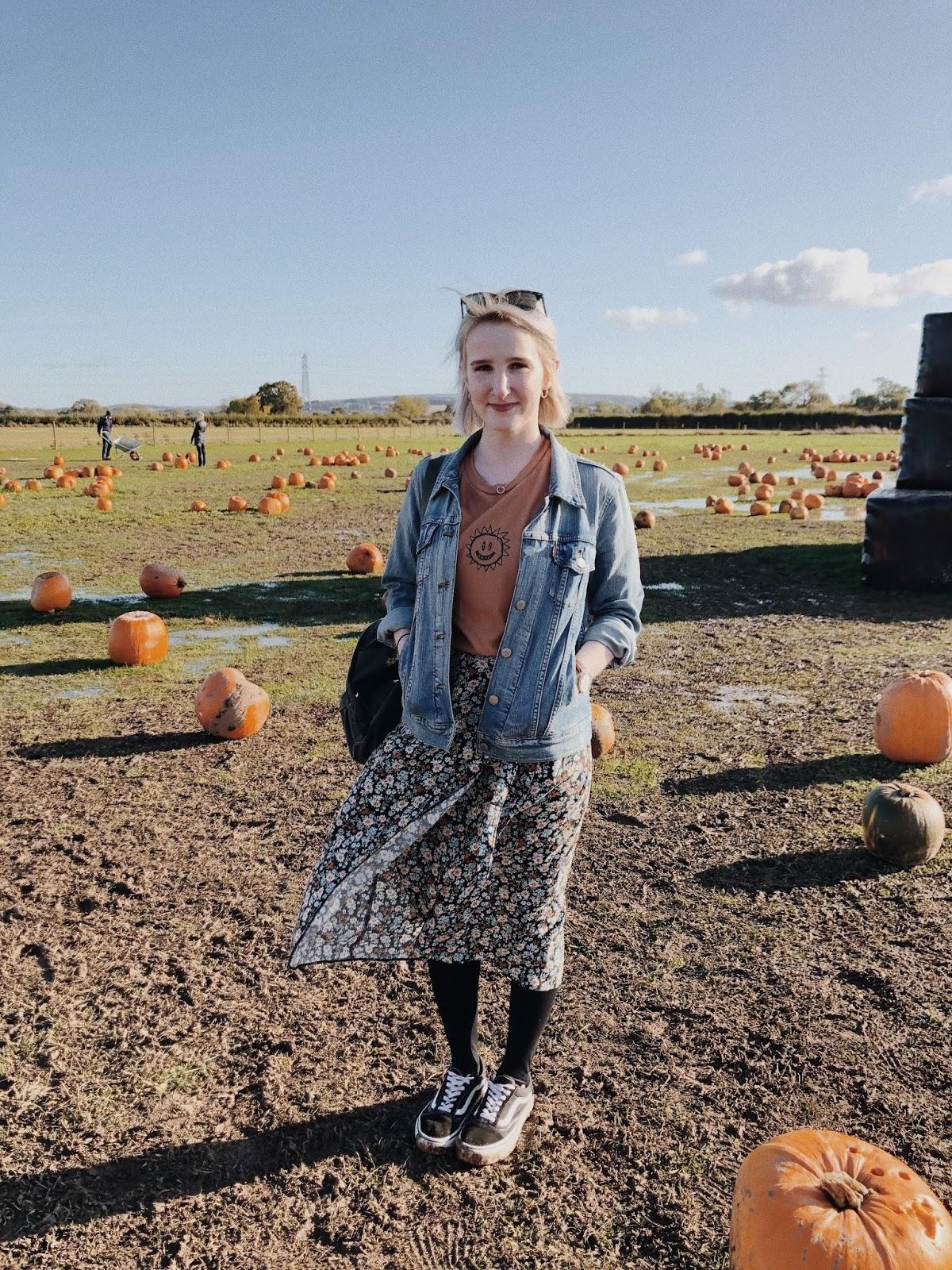 Autumn Blogger Roundup