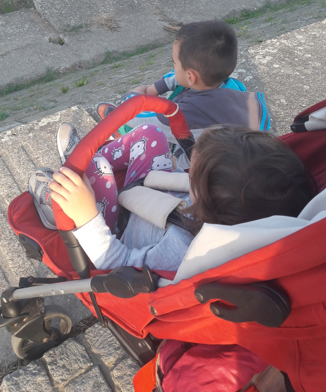 kolica za izlaske