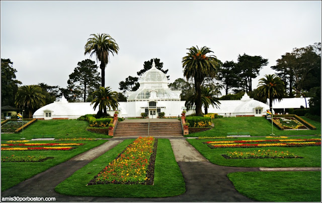Golden Gate Park: Conservatory of Flowers