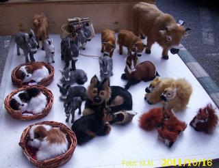 animale diverse din plus