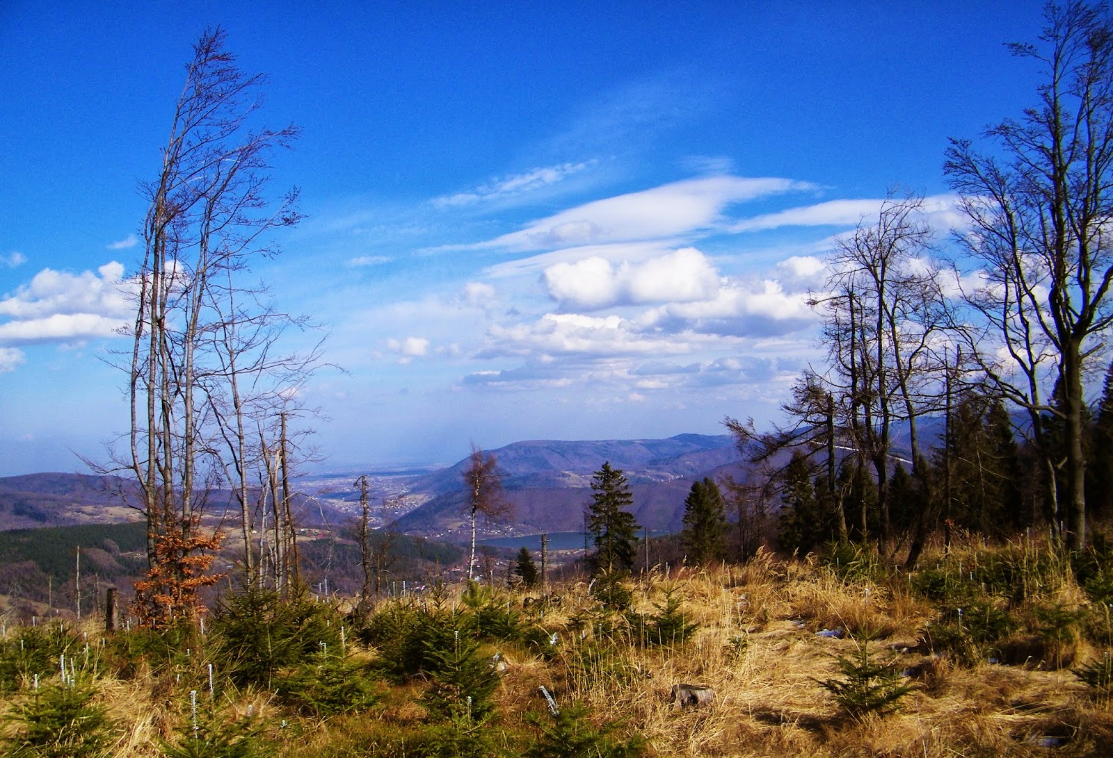 Czupel - Beskid Mały - Panorama