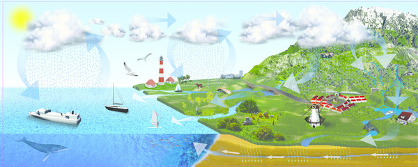 What is Water Cycle | Complete Idea | diagram of water cycle |