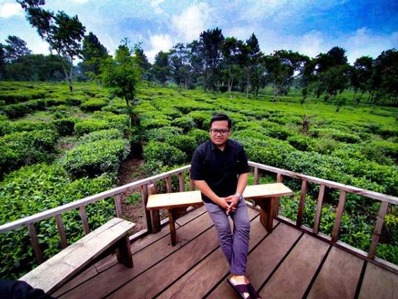 destinasi wisata Kebun Teh Wonosari Malang