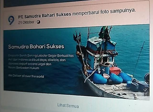 Ali Fikri Ungkap Upaya KPK Telisik Aliran Duit Eksportir Benur ke Edhy Prabowo