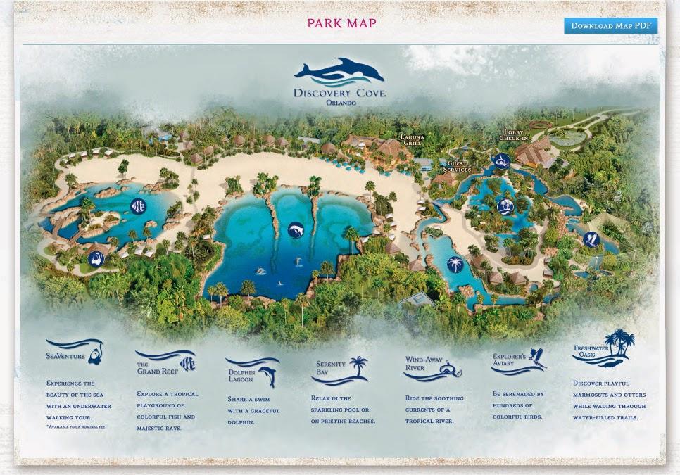 cc820cca2d79d ThemeParkMama  TripAdvisor honors Discovery Cove as No. 1 amusement ...