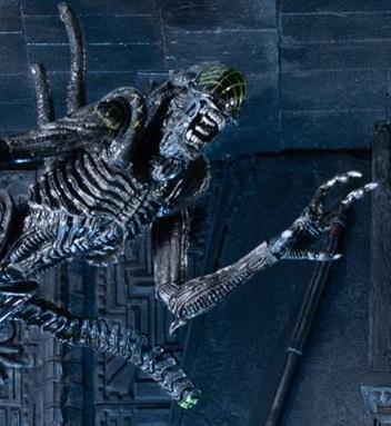"NECA unveils the ""Grid Alien Vs. Celtic Predator"" pack  cd682bc6786"