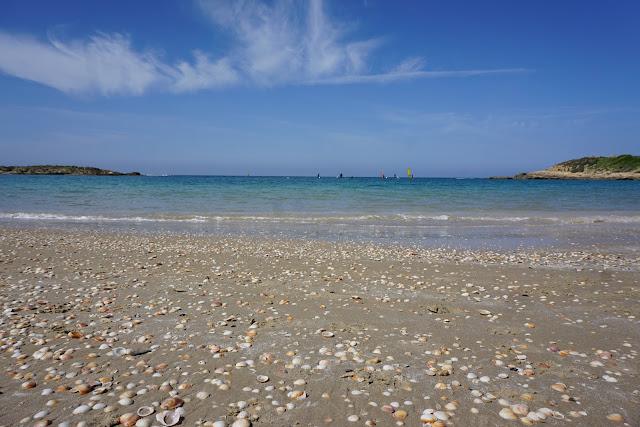 חופי הים הטובים ביותר של ישראל