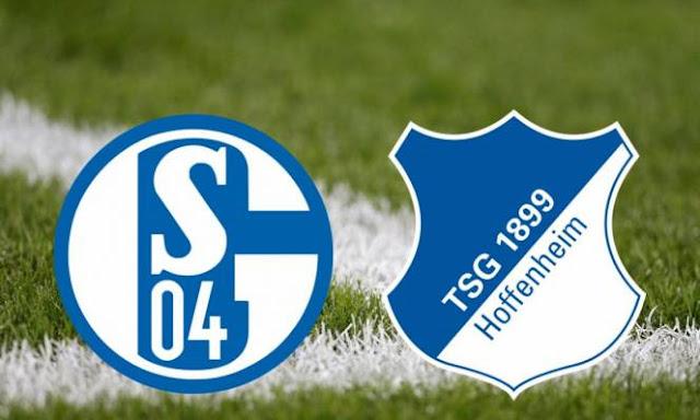 Schalke 04 vs Hoffenheim Highlights & Full Match 17 February 2018