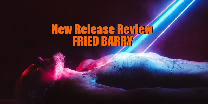 fried barry review