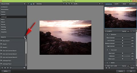 Click on grid icon to enter grid view in Topaz Clarity