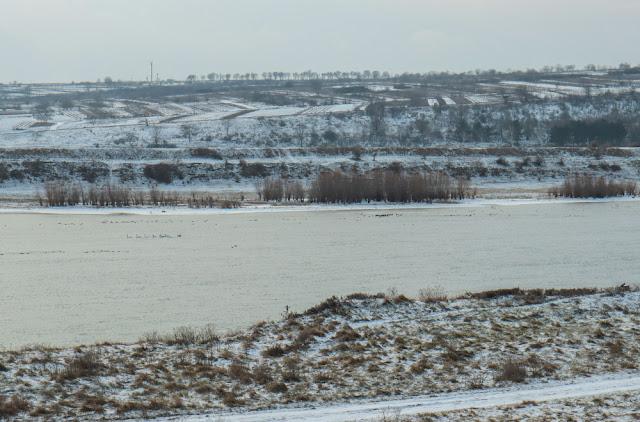 Зимний Днестр