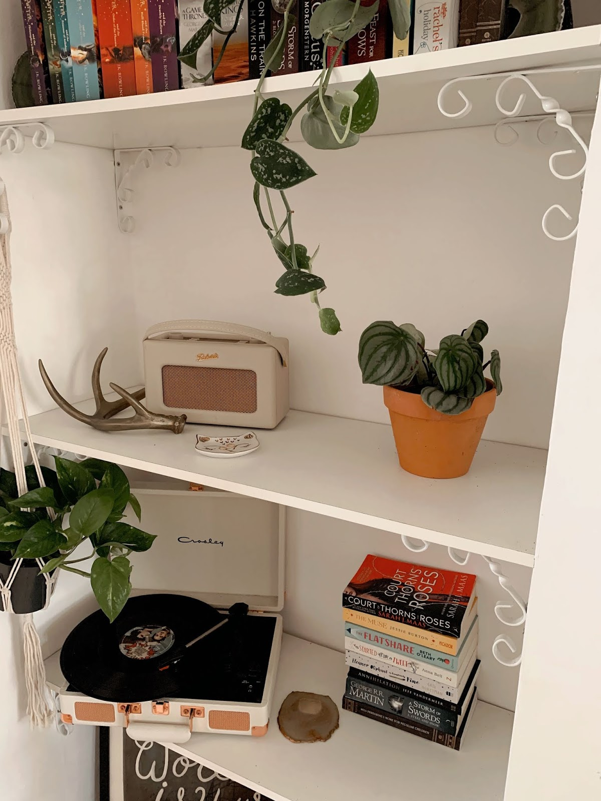 Book shelf houseplants crosley radio player
