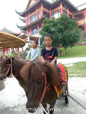 aktivitas-naik-kuda-poni-di-istana-panda-taman-safari-indonesia-bogor