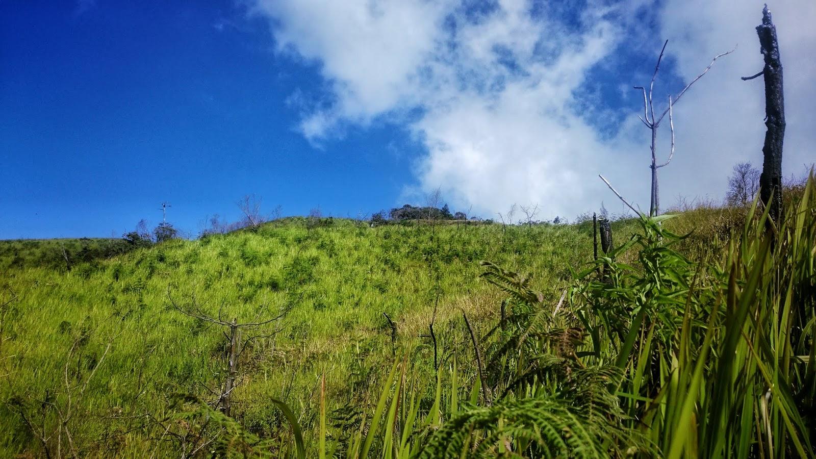 Bukit Mongkrang Spot Hits Berfoto Ria Di Karanganyar