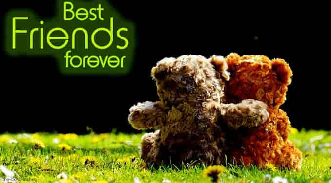 best friends forever with cute teddy bear