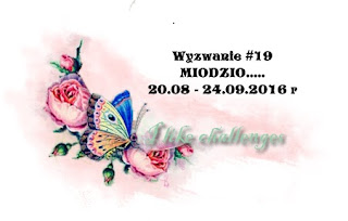 http://like-chellenges.blogspot.com/2016/08/wyzwanie-19-miodzio.html