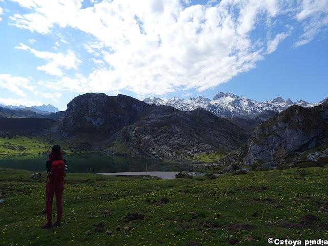 Mirada al Lago Enol en los Lagos de Covadonga.